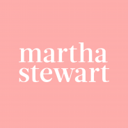 Planetary Design Canister is Martha Stewart Favorite